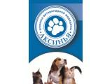 """Логотип """"АКСИНЬЯ"""" ветеринарная клиника"""