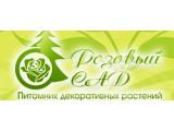 """Логотип Питомник декоративных растений """"Розовый сад"""" г. Краснодар"""