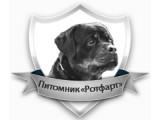 Логотип Питомник ротвейлеров и джек рассел терьеров
