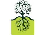 Логотип Сервис Live